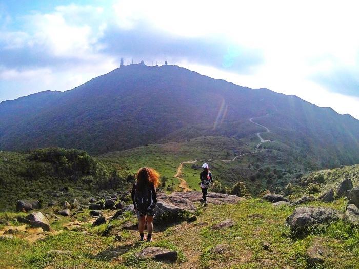 Tai Mo Shan trail-maclehose8